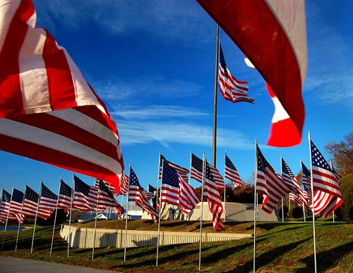 Gallery Image Veterans-Day-Flag-Display-North-County-Park-11-11-2011_7997.jpg