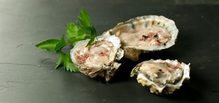 RAW OYSTERS!