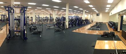 A sneak peak of our free weight area.