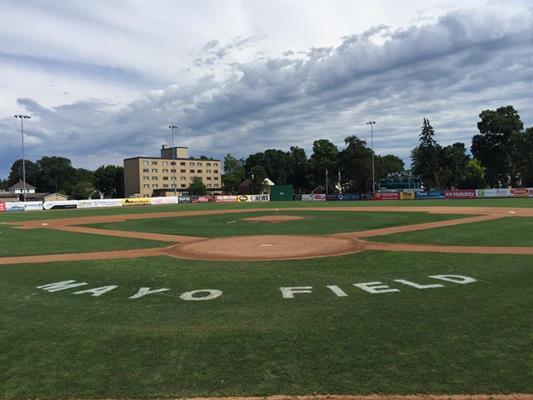 Rochester Honkers Baseball Club