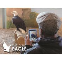 The National Eagle Center welcomes visitors back in the New Year