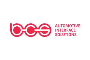 BCS-AIS Logo