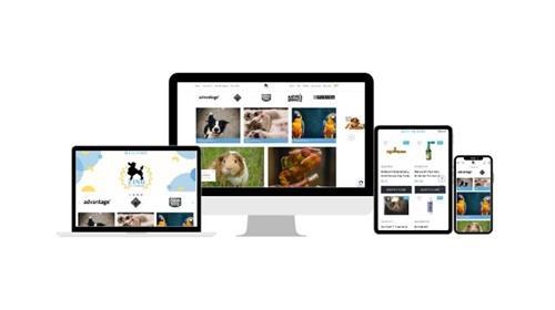 Zing Pet Supplies e-Commerce