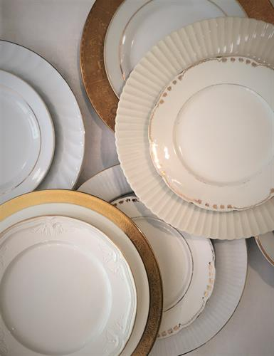 White, Cream, Ivory with Gold Dinner Plates and Salads