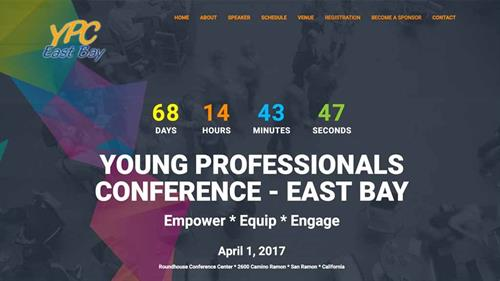 Young Professionals Conference - 2017