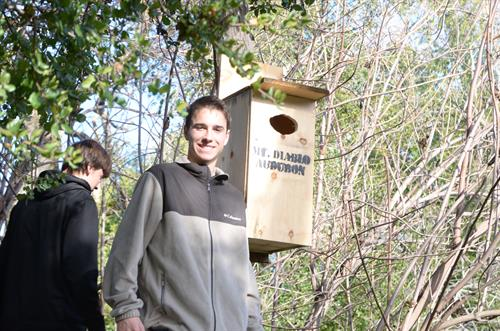 My son's Eagle Project - Making Wood Duck Nest Boxes for Audobon in Walnut Creek