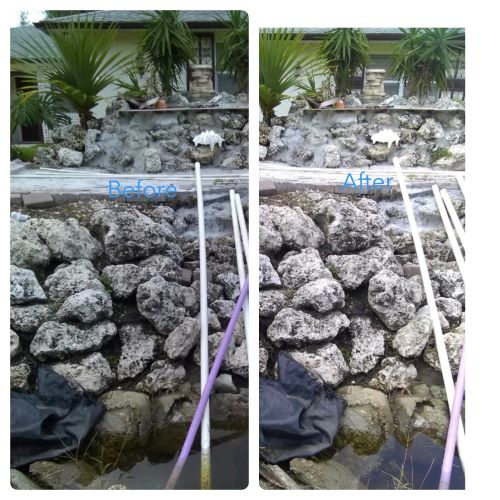 Before & After algae removal off of rocks