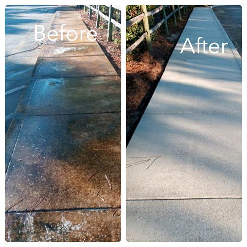 Before & After Heavy algae removal