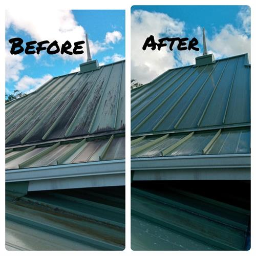 Before & After roof sanitizing cleaning