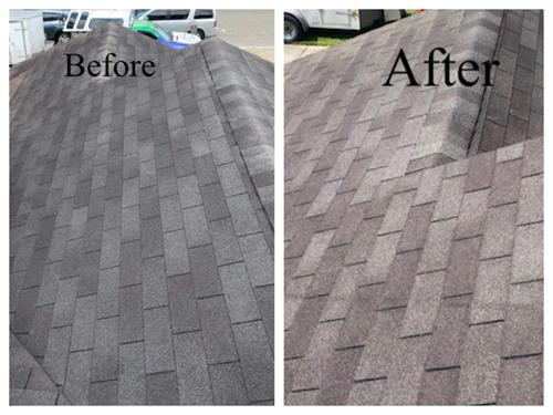 before and after roof cleaning treatment
