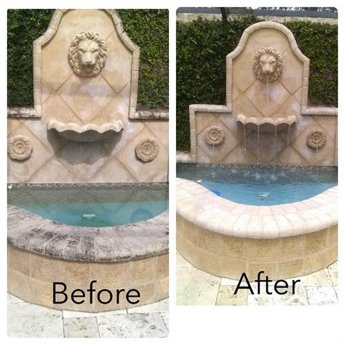 before and after mold cleaning treatment