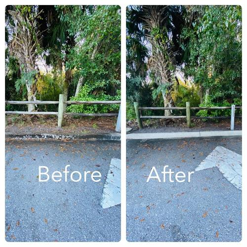 Before & After curb cleaning