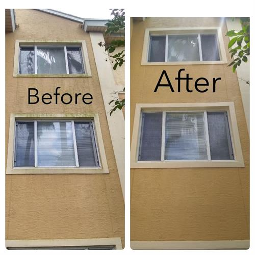 before and after mold, mildew cleaning treatment