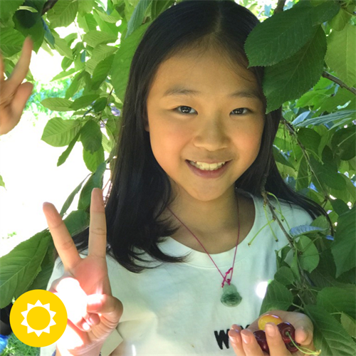 Summit Academy student picking cherries on a field trip in the orchards east of Mt. Hood.