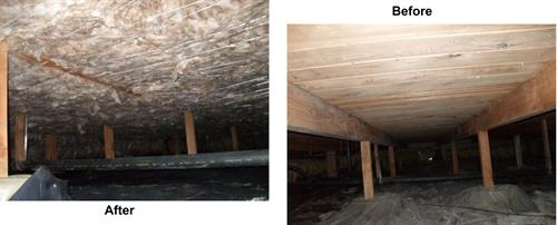 Gallery Image Crawlspace_before_and_After.jpg