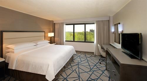 King Bed Suite - Bedroom Shot