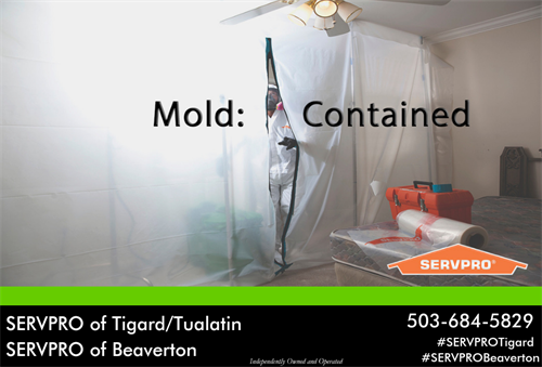 SERVPRO of Tigard/Tualatin is able to help with mold damage. We make sure that while the clean up process is underway there is no threat of spores spreading in your home or office.