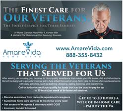 AmareVida, LLC