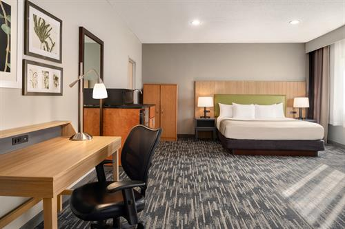 Gallery Image Country_Inn__Suites_by_Radisson._Brookings._SD_-_1_K_Bed_Studio_Suite_-_1454690.jpg