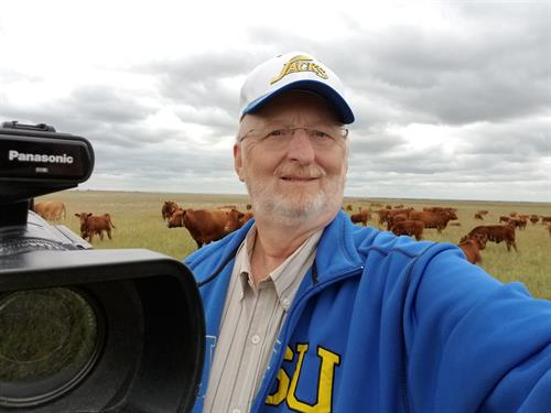 In a cow pasture near Highmore SD, shooting how cows graze, prior to the pandemic