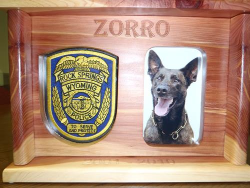 Zorro - Thanks for your service!!!