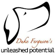 Unleashed Potential K9 Academy