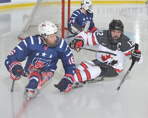 World Sledge in action at MacLauchlan Arena