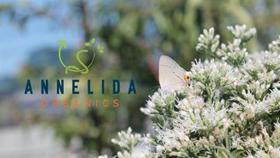 Annelida Organics
