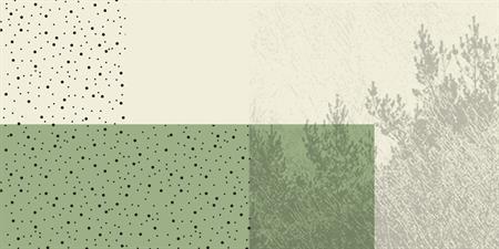 Wild + Pine