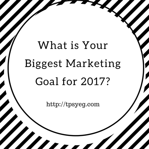 What do you want your 2017 marketing plan to achieve for your business?