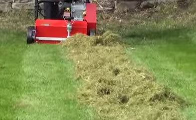Power Raking For Lawn Health