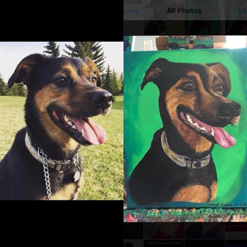"Custom ""Andy"" pet portrait acrylic painting on canvas 12x18"""
