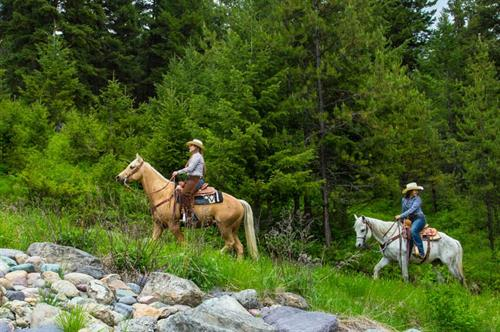 Gallery Image Trail_Rides_(5_of_5).jpg