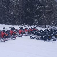 Come Check Out our New Sleds!