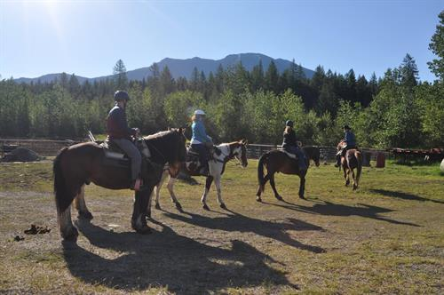 Family-friendly trail rides depart right from the Discovery Center at our West Glacier Corral