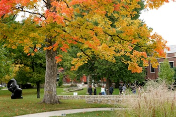 Gallery Image 2009_CAMPUS_fallfoliage.jpg