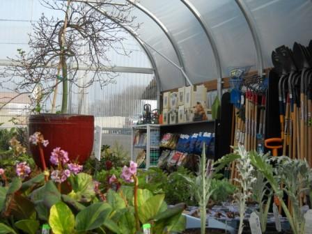 Turning winter gardens into spring splender