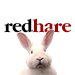 Redhare Design Consulting Promotion