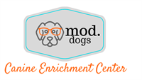 Mod.Dogs Canine Enrichment Center