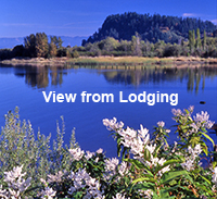 Gallery Image view_from_lodging_for_chamber.jpg