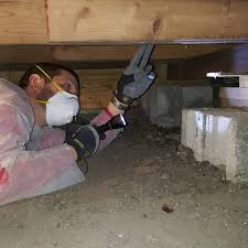 Inspecting the crawlspace for structural condition.