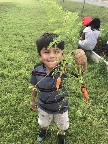 Gallery Image Boy_with_Carrots_GAVA_EC_April_2017.jpg