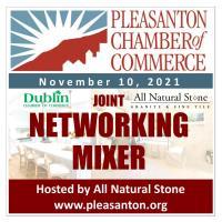 Networking Mixer 11.10.21