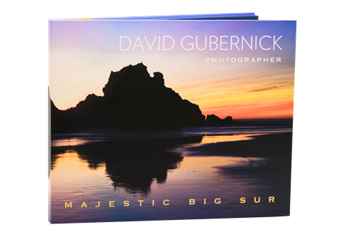 Gallery Image Gubernick-Front_Cover__.png