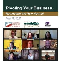 Watch: Pivoting Your Business Webinar