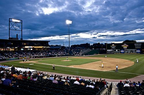 York Revolution Professional Baseball