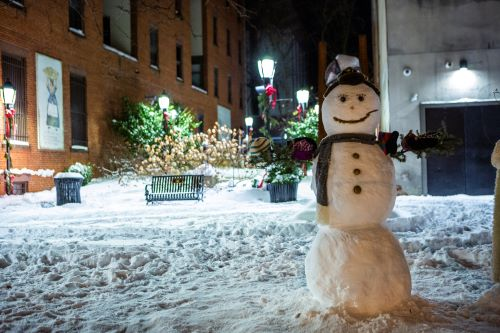 Winter in Cherry Lane