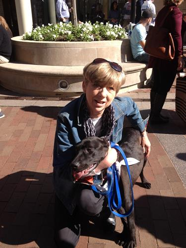 Pet Adoption Event, October 2014
