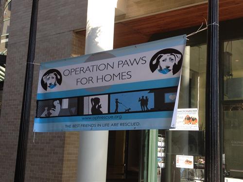 Pet Adoption Event, October 2014