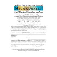 Multi-Chamber Mega Connect Networking Lunch August 2018